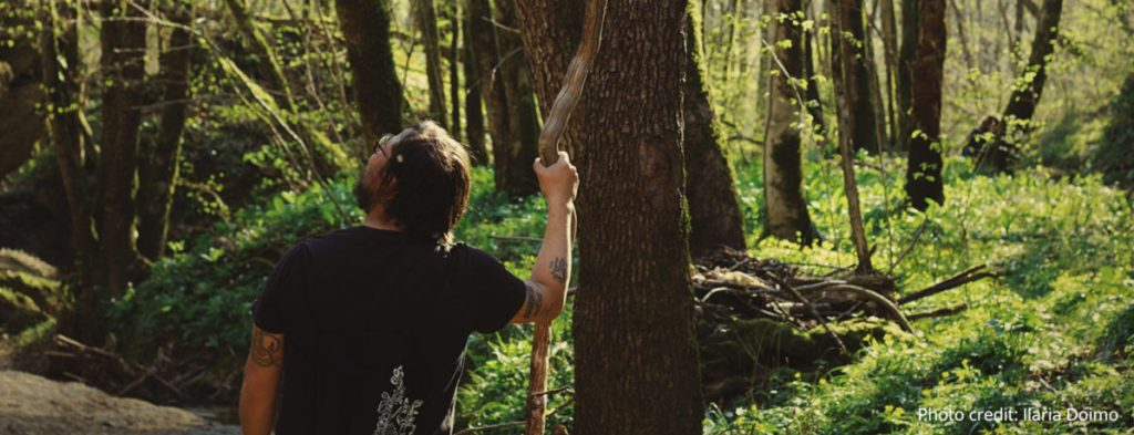 Forest and wellbeing